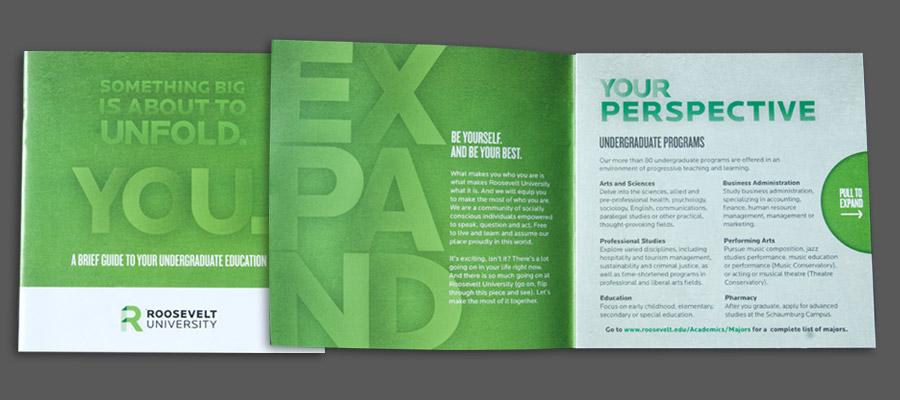 Brochure cover + Fist foldout opening